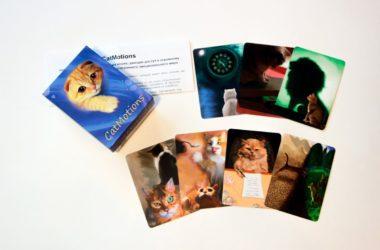 Метафорические ассоциативные карты «CatMotions»